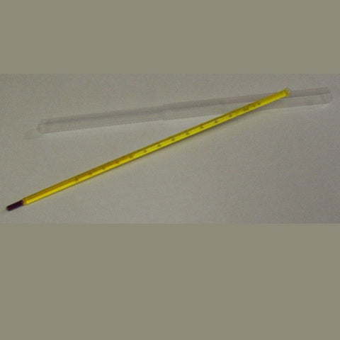 "Thermometer, 12"" Laboratory"