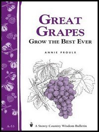 Wine Books - Great Grapes By Proulx