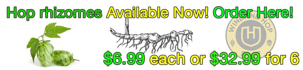 Winemaking class Sunday, Feb 9, 4:15pm, at The Wine and Hop Shop