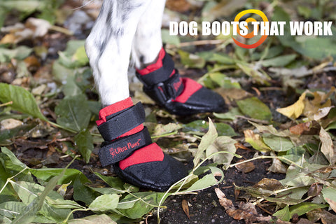 Ultra Paws Dog Boot