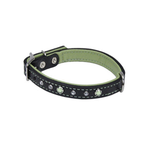 Circle T Dog Leather Collar with Jewels -30cm