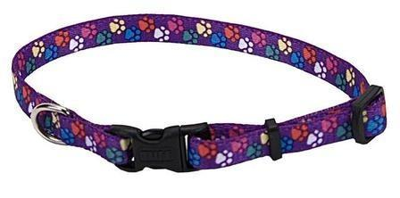 Pet Attire Purple Paws Dog Collars