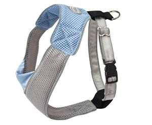 Harness V Mesh in Blue/Grey