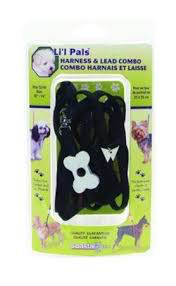 Li'l Pals Harness and Lead Combo Bone -Black