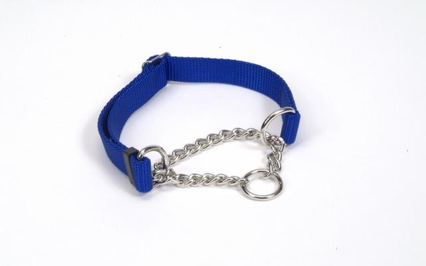 Training Check Choke Collars - Red, Black, Blue - 4 Sizes