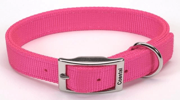 Coastal Basics Nylon Dog Collars - Double Ply 25mm