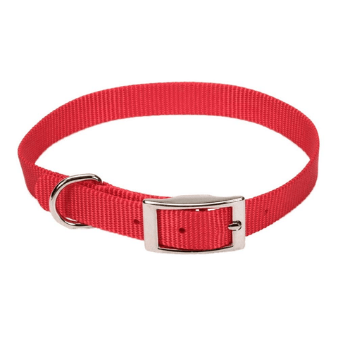 Coastal Dog Collars - Single Ply
