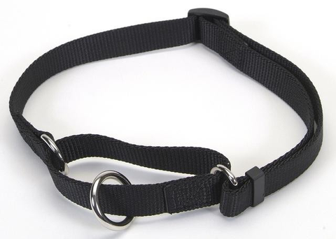 Coastal Martingale No-Slip Collar 35 - 50cm