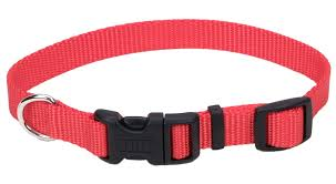 Coastal Tuff Buckle Collars-15mm, 19mm, 25mm