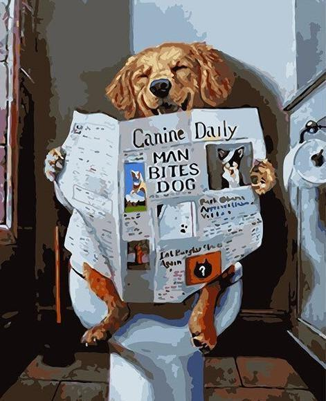 Dog reading news paper on toilet running paint by numbers canvas for adults from paint pots