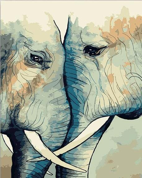 Elephant Couple paint by numbers canvas for adults from paint pots