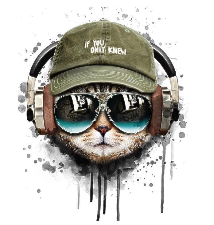 Cool Musical Cat Sunglasses with Cap paint by numbers canvas for adults from paint pots