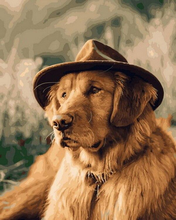 Dog Wearing Cowboy Hat - Paint by numbers canvas for adults from paint pots