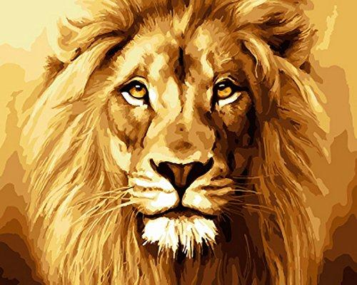 Lion Face  - Paint by numbers canvas for adults from paint pots