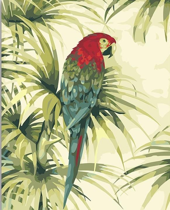 Peaceful Parrot paint by numbers canvas for adults from paint pots