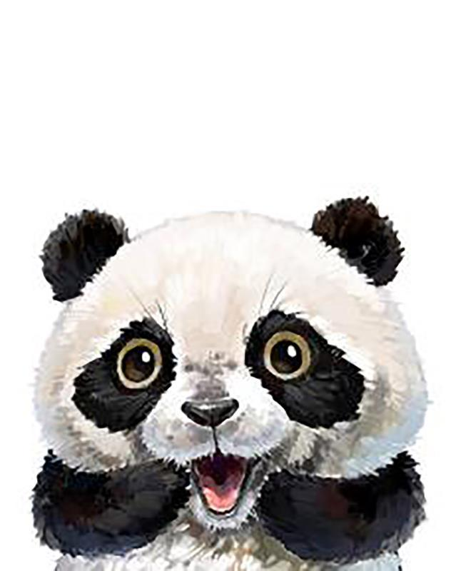 Pet Panda Artwork paint by numbers canvas for adults from paint pots