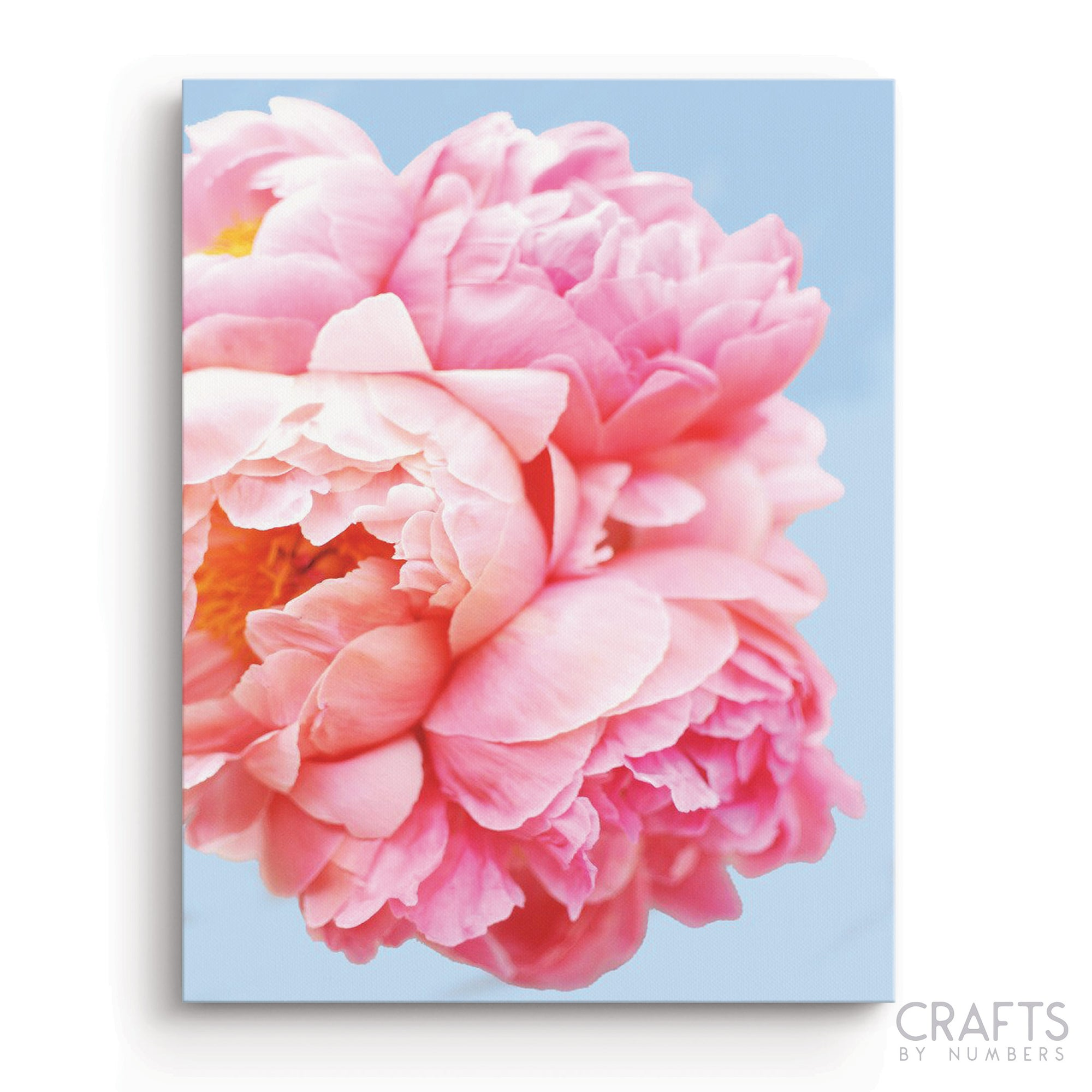 Pink Floral Art paint by numbers canvas for adults from paint pots