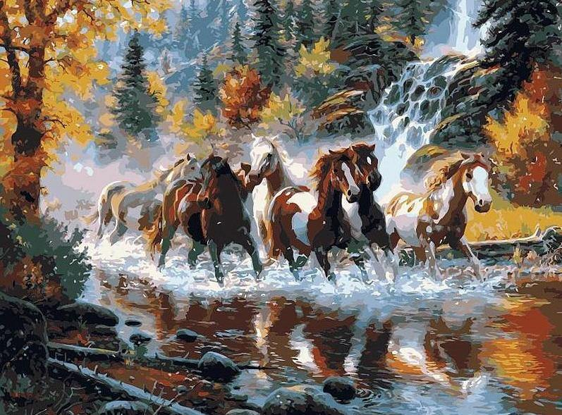 running horses on river paint by numbers canvas from paint pots