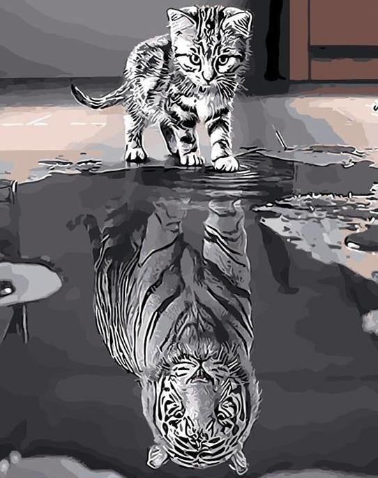 Cat & Tiger Reflection paint by numbers canvas for adults from paint pots