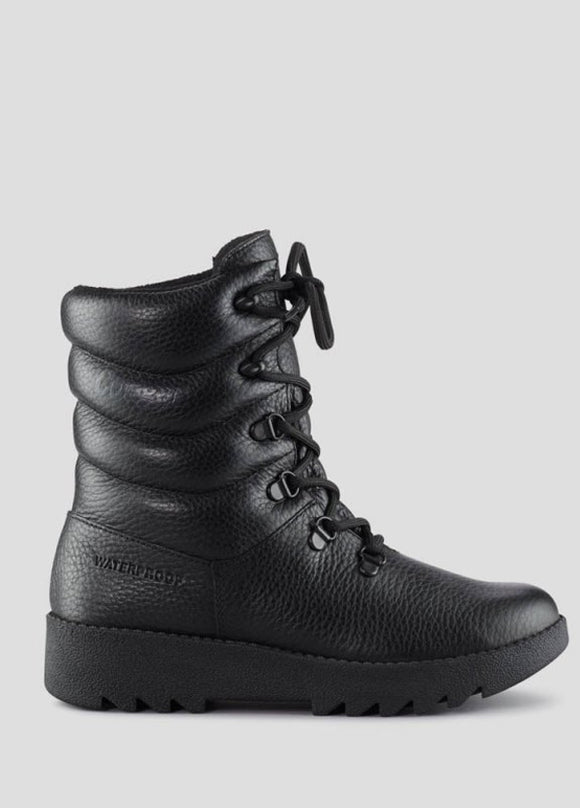 Cougar Blackout Boot