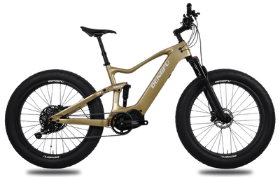 carbon fat e-bike e06