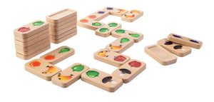 Plan Toys - Fruit and Veggie Domino