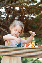 Load image into Gallery viewer, Tender Leaf Toys - Woodland Animals