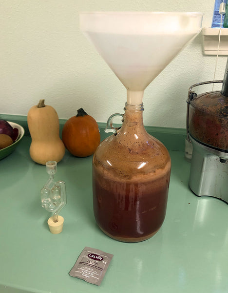 Cider in Small Carboy