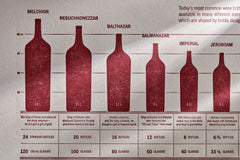 Mighty Melchior to Dimunitive Demi: Wine Bottle Size Guide