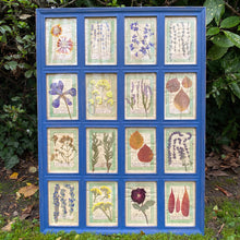 Load image into Gallery viewer, Yves Blue Handmade Pressed Flower Herbariums