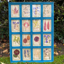 Load image into Gallery viewer, Turquoise Blue Handmade Pressed Flower Herbariums
