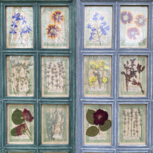 Load image into Gallery viewer, Washed Green Handmade Pressed Flower Herbariums