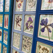 Load image into Gallery viewer, Washed Blue Handmade Pressed Flower Herbariums