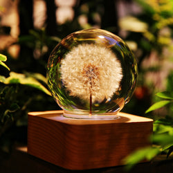 Dandelion Mood Light - 6cm