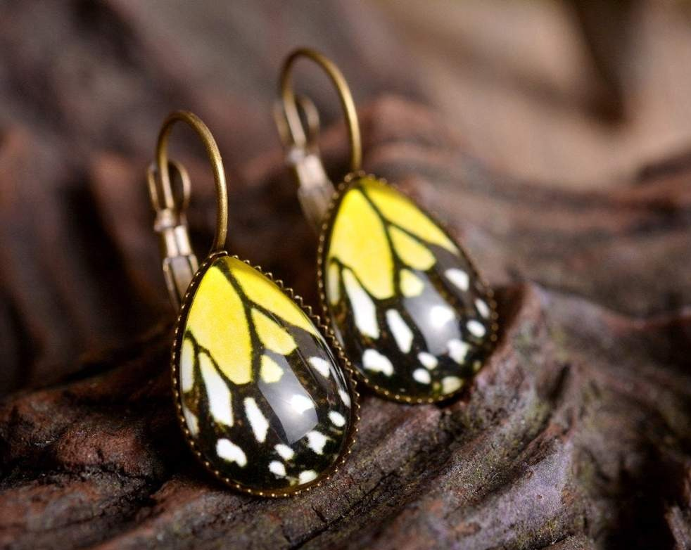 Butterfly earrings, butterfly wing earrings, tear drop earrings, dangle earrings, brass earrings, colorful earrings, glass dome earrings