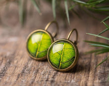 Load image into Gallery viewer, Tree leaf earrings, green dangle earrings, antique brass earrings, green earrings, glass dome earrings, antique bronze / silver plated