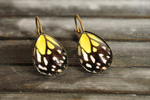 Load image into Gallery viewer, Butterfly earrings, butterfly wing earrings, tear drop earrings, dangle earrings, brass earrings, colorful earrings, glass dome earrings
