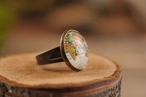 Vintage map ring, adjustable ring, statement ring, antique map ring, antique brass ring, glass ring, antique brass / silver plated ring