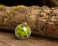 Load image into Gallery viewer, Woodland necklace, terrarium necklace, real moss necklace, nature necklace, green necklace, genuine moss pendant, antique brass necklace