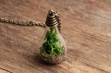 Load image into Gallery viewer, Real moss pendant, real moss necklace, nature necklace, green necklace, antique brass pendant, glass vial necklace, antique brass necklace