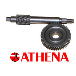 Athena Final Drive Gear '89-'01