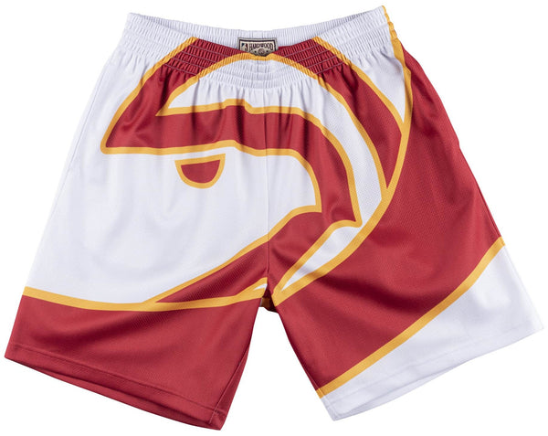 Mitchell & Ness Big Face Shorts