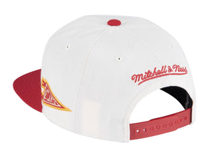 Mitchell & Ness Fan Banner Snapback