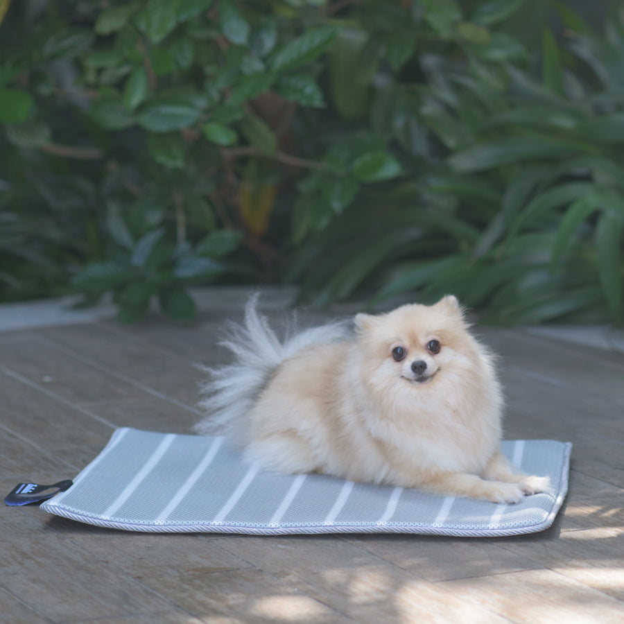ZeeZeeZee Pet Futon Bed