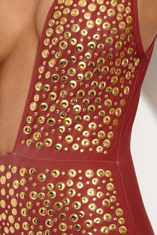 BEACH RIOT Davis Deep V One Piece - Fiery Sienna One Piece | Fiery Sienna | Beach Riot Davis One Piece Burnt-red one piece swimsuit with a deep plunging v-neckline. Gold stud detailing on the front. Horizontal seam defines waistline. Thick shoulder straps. Open back. Cheeky coverage.