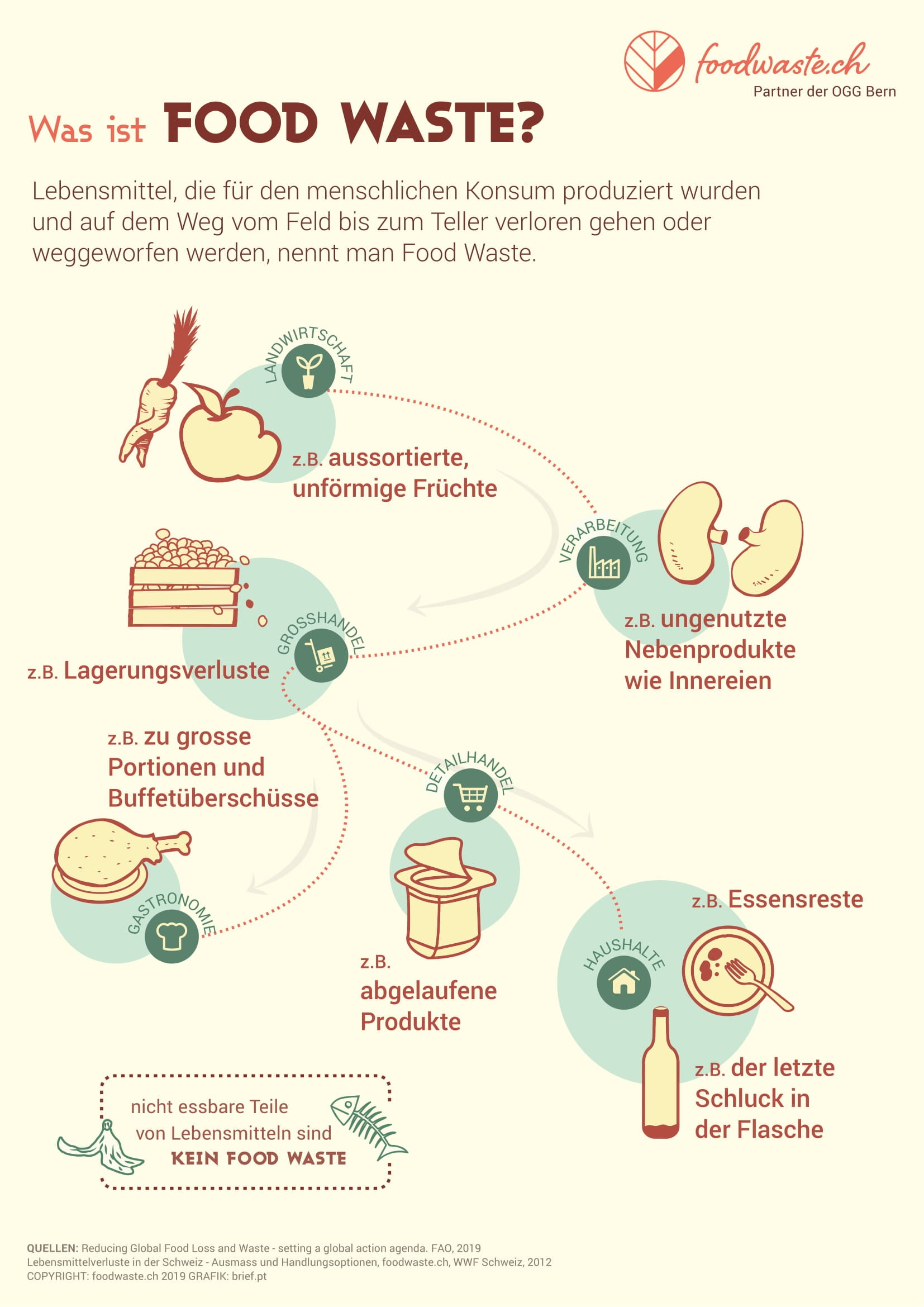 Food Waste - What is food waste - info graphic by foodwaste.ch