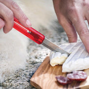 HIPPUS Picnic Knife - Swiss Advance