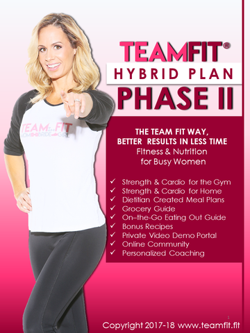TEAM FIT HYBRID - PHASE II