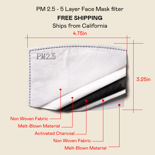 PM 2.5 Mask Filters Packs