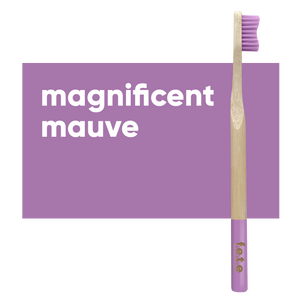 Adult Single Bamboo Toothbrush (Soft)